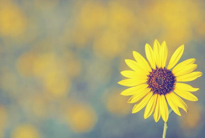 男性牛皮癣患者如何盛开出自己的蓝莲花?